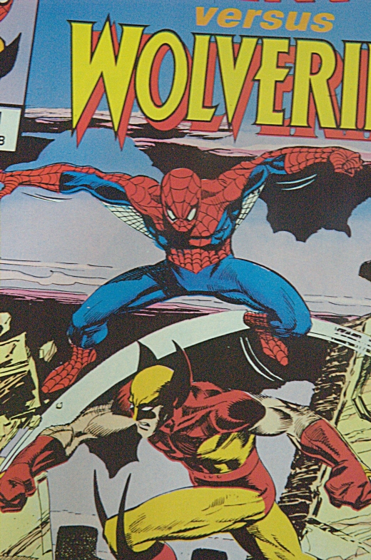 Spider-Man vs Wolverine upclose - SS 1/15, F20, Focal Length 70mm
